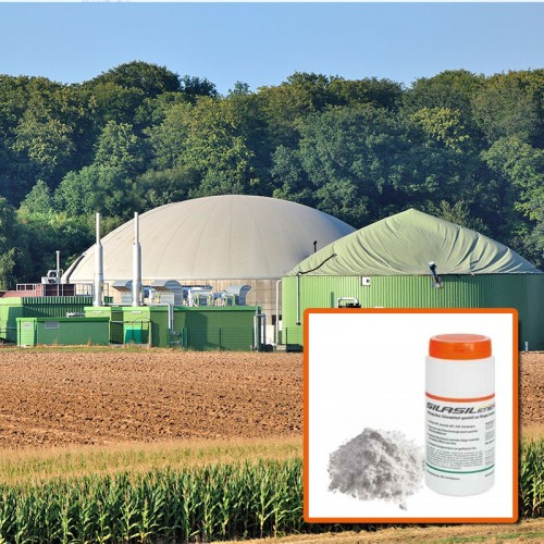 Silasil ENERGY.BG ® Cultures dherbe