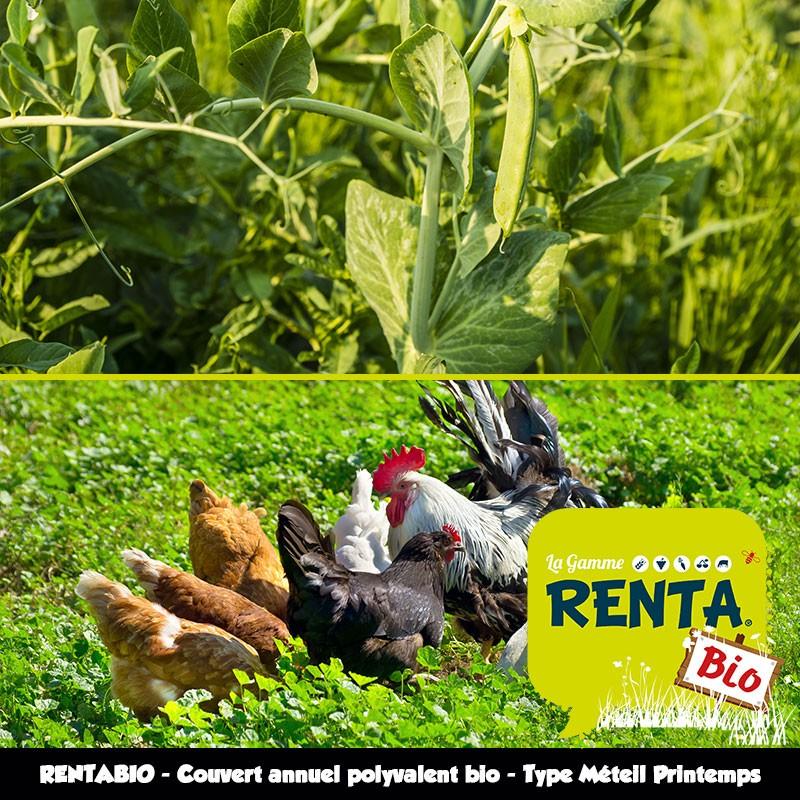 RENTABIO Méteil Printemps - Couvert améliorant et Parcours volailles bio - Non hivernant