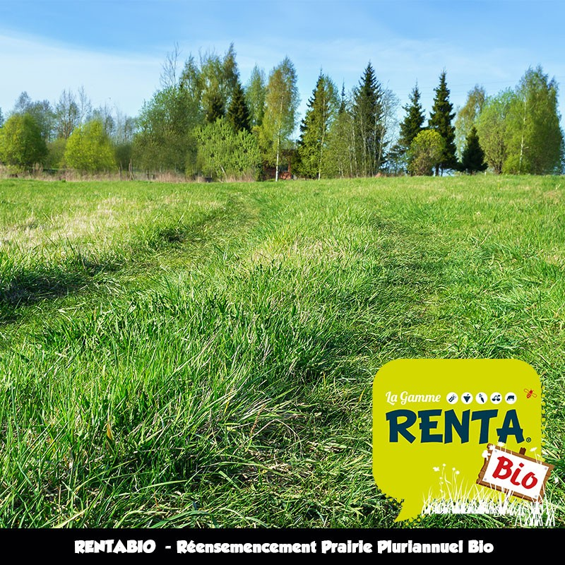 RENTABIO - Réensemencement Prairie Pluriannuel Bio
