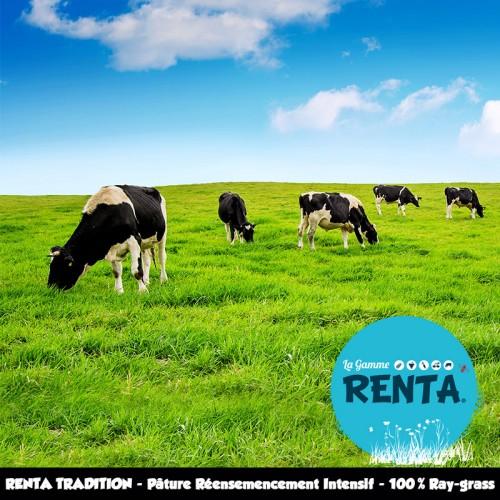 RENTA TRADITION - Mélange Pâture de Réensemencement Intensif – 100% Ray-grass