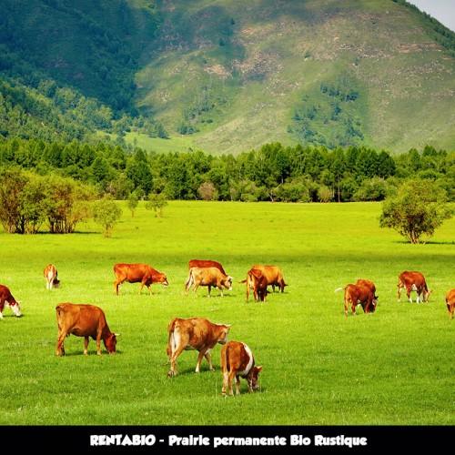 RENTA BIO - Mélange Prairie Permanente Bio Rustique - Tous types de sols (70/30) **