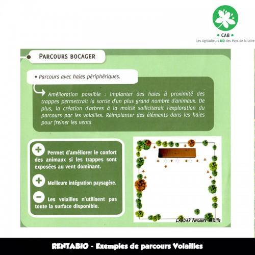 RENTABIO Méteil Printemps - Exemple de parcours Volailles deparcours Volailles