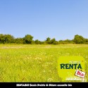 RENTA BIO - Semis Prairie/Pâture Annuelle Bio*