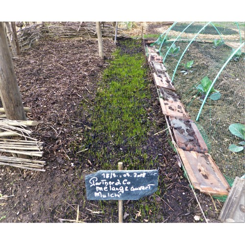 RENTA TRADITION - Couvert Mulch Viticulture et Arboriculture