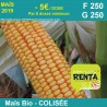 COLISÉE - Semence de maïs biologique* - FAO 250/250