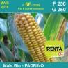 PADRINO - Semence de maïs biologique* - FAO 250/250