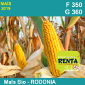 RODONIA - Semence de maïs biologique* - FAO 350/360