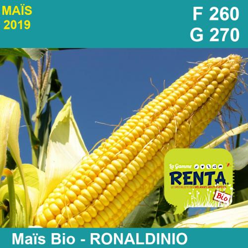 RONALDINIO - Semence de maïs biologique* - FAO 260/270